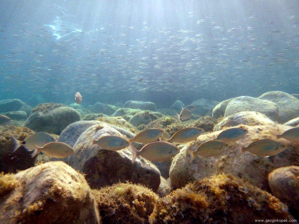 Behramkale Su altı
